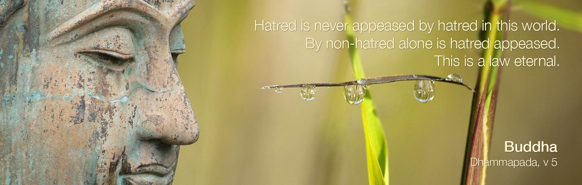 Hatred is never appeased by hatred in this world. By non-hatred alone is hatred appeased. This is a law eternal.